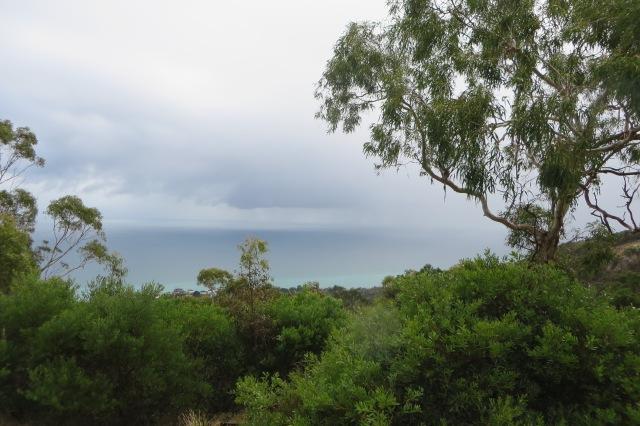 Northern lookout, Seawinds garden