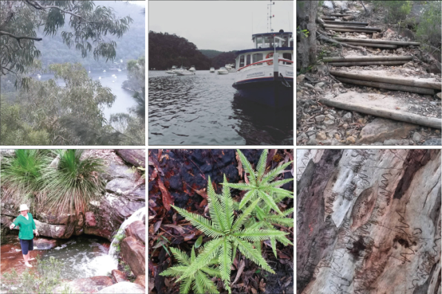 Scenes from the Berowra to Cowan walk: view down to Berowra waters, Berowra waters marina, hill steps, water hole, ferns, scribble gums