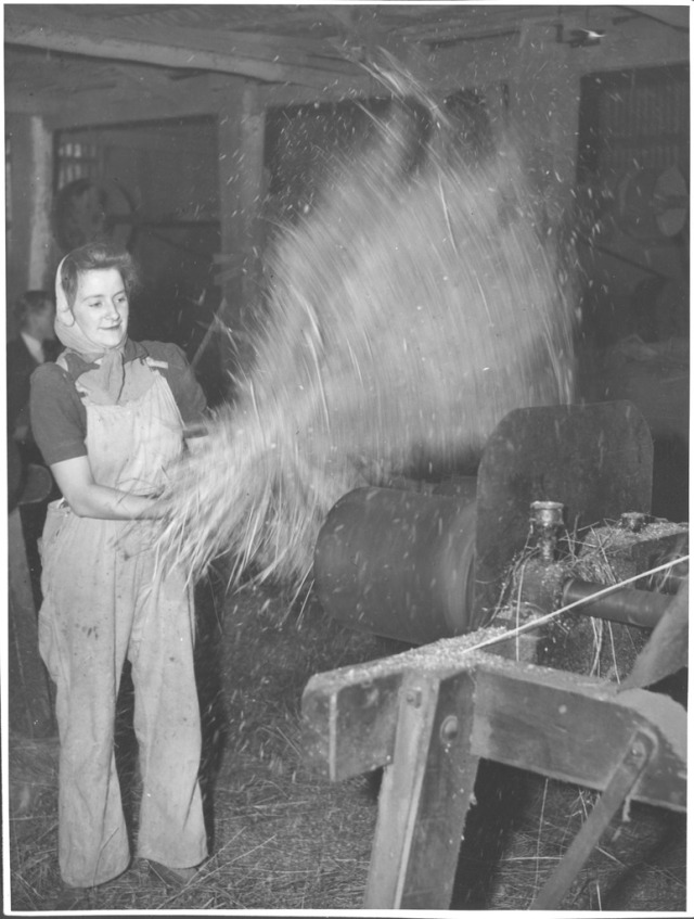 Land Army girl winnowing flax at the Drouin flax mill, Drouin, Victoria