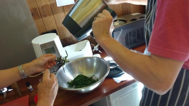 Warragul greens and macadamia nut pesto