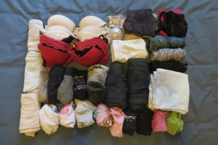 Bras, socks & jocks. Also 2 slips, 1 camisole, 2 leggings, 2 stockings and hankies.