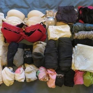Bras, socks & jocks. Also 2 slips, 1 camisole, 2 leggings, 2 stockings and hankies.